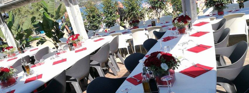 Azur Roses producteur de fleurs coupées à la Crau